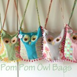 More About the Pom Pom Owl Purses